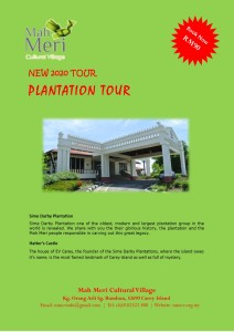 New Package-Plantation1